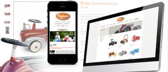 Baghera e-commerce multi-domaine